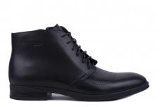 Туфли мужские Ikos 3640-1